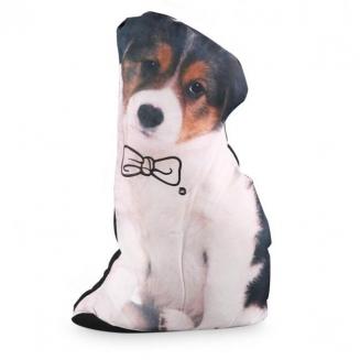 peso de porta cachorro 4658