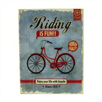 placa metal riding is fun 6612